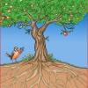 Tree of Me