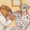 Dottie the Dalmatian has Epilepsy